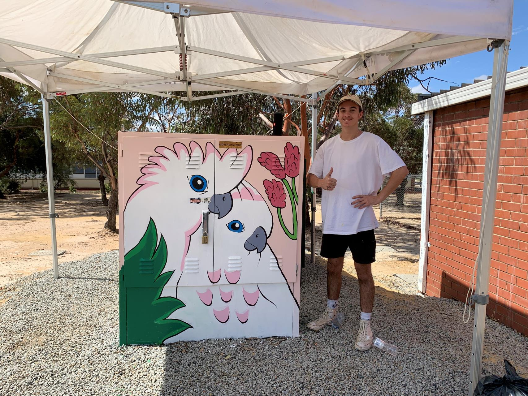 Merredin's Power Boxes Receive Face Lift From Local Youth